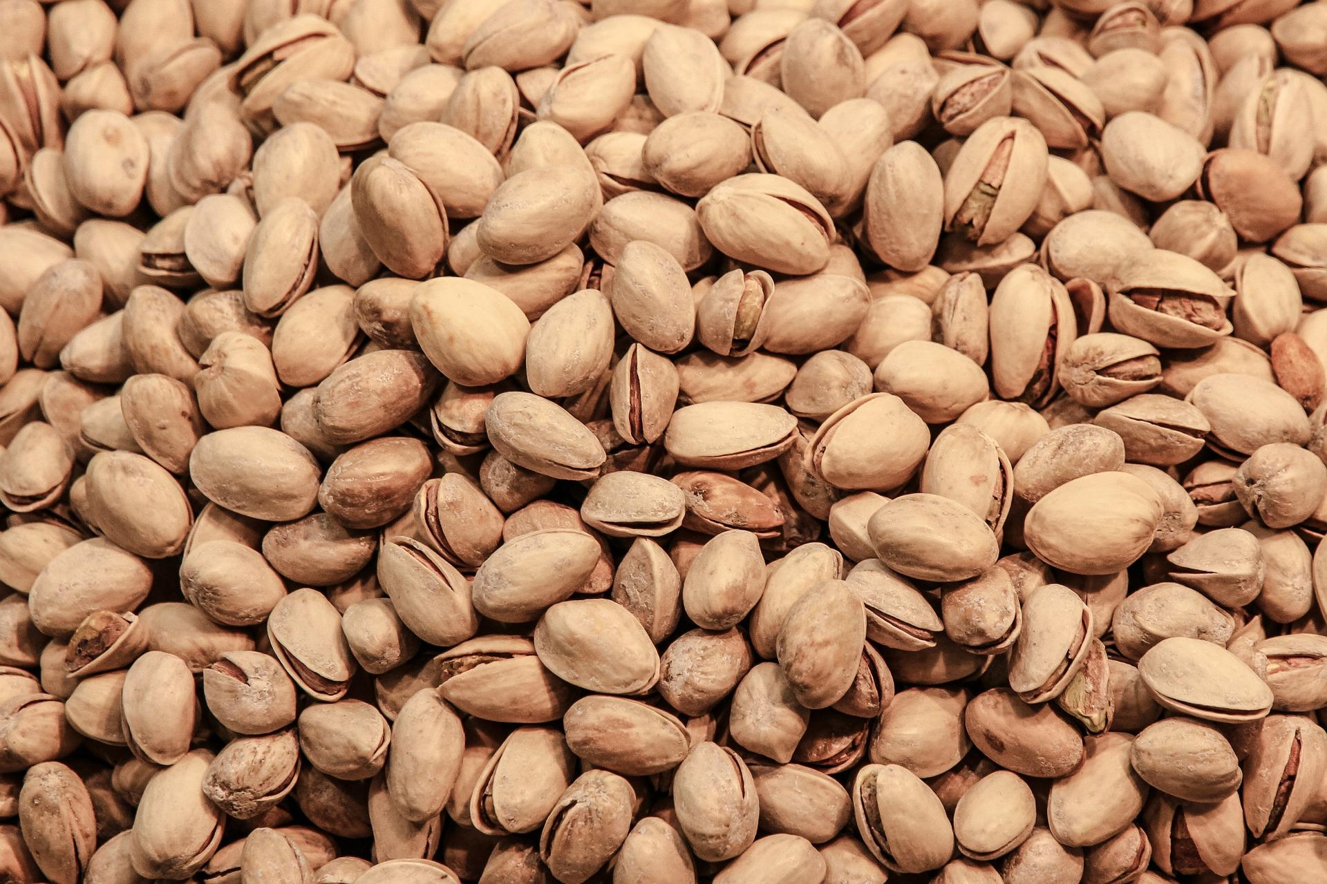 pistachio-428544_1920