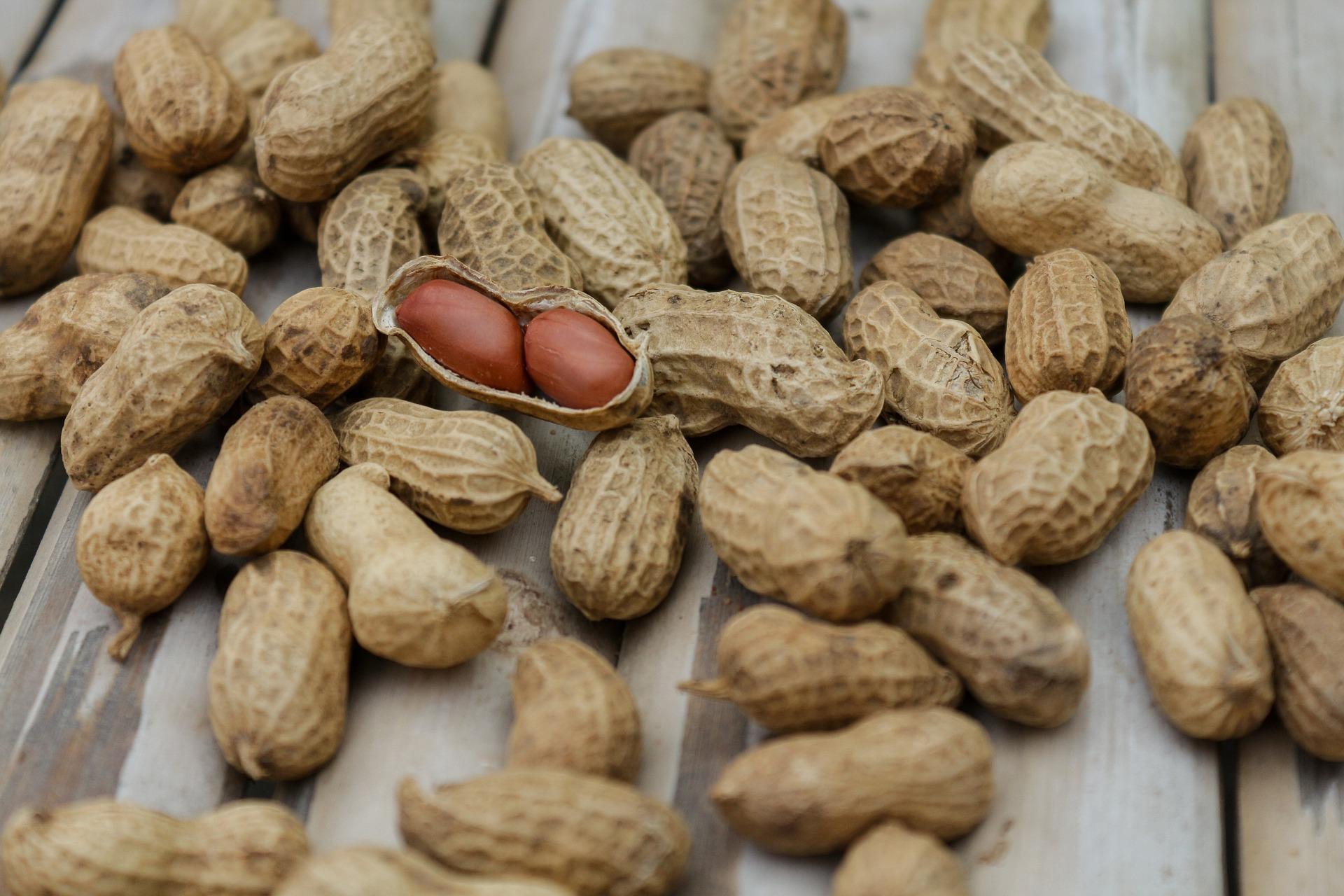 peanuts-1850809_1920